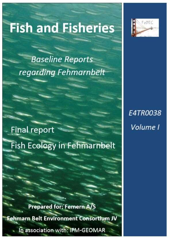 20.fish ecology in fehmarnbelt
