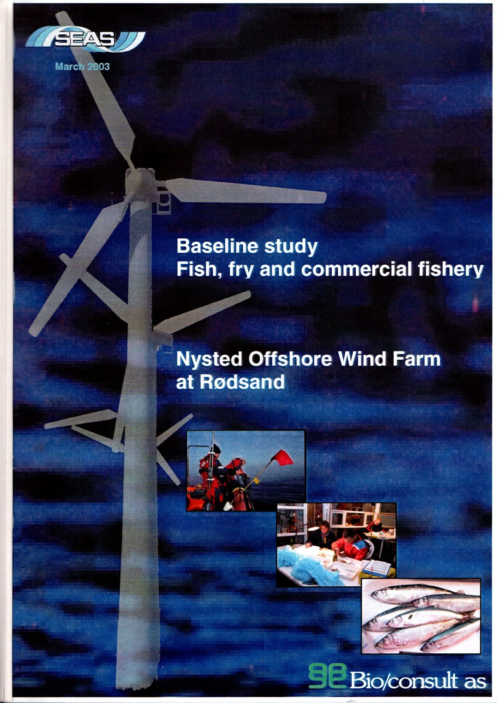 23.baseline study fish, fry and commercial fishery nysted offshore wind farm at rødsand status report